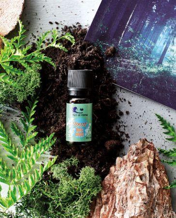 Image de la catégorie Parfums d'ambiance naturels